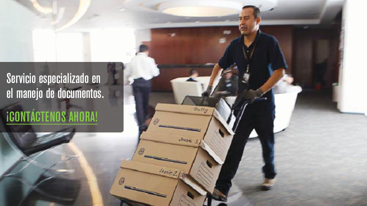 Mudanzas y maniobras internas en el df for Mudanza oficina